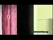 Порно фильмы с рокко сиффреди смотреть