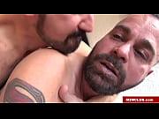 Porn norge free brutal porn