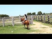 Hd άλογο και γυναίκες com γεμάτη σεξ, ταινίες 3gp mobil xxxx βίντεο καθημερινή κίνηση κατεβάστε xxx αγγλικά pron vidio downloe free images