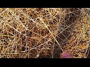 Анджелина джоли в голом виде видео