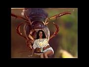El documental mas interesante que hayas visto nunca. MUY INTERESANTE, insect fight Video Screenshot Preview