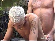 Tucan swinger klub runde bryster