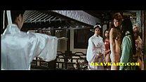 Karate, Kusse, blonde Katzen Chinese XXX