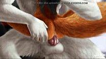 Furry Yiff GIF Compilation - Washa Animations C...