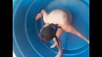Novinha na Caixa d'agua