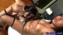 Ladyboy sucks tgirls cock porn videos