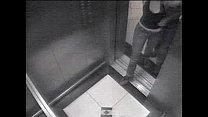 elevador no sexo Flagra