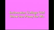 Pepek Indonesia porn videos