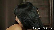 Download lesbian strapless on straplessdildo.hugescock.com porn videos