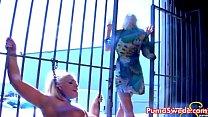 ... sweet sadie's licks swede puma blonde European