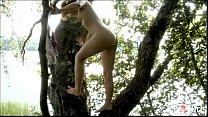 assessor by tree Avina