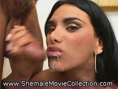 Shemale Nymphos Get Jizzed!