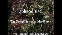 大麻的性秘密 完整版 中文字幕