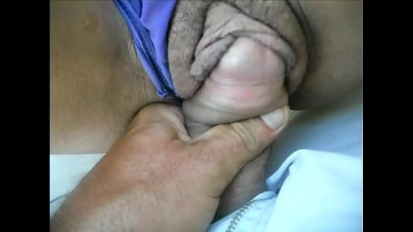 Amadora dando sua buceta greluda