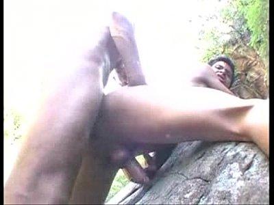 Vts 01 Gay