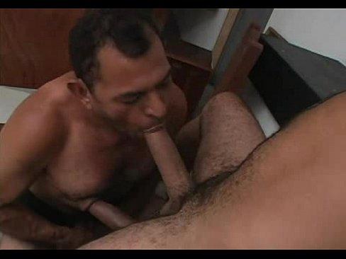 Urso peludo mamando antes de levar no cu